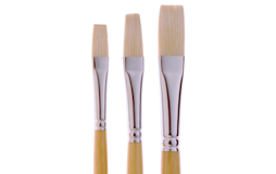 White Bristle Brushes